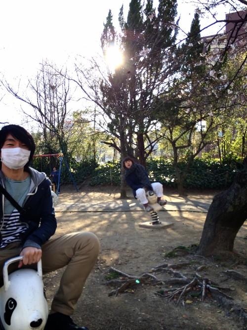 高知の公園